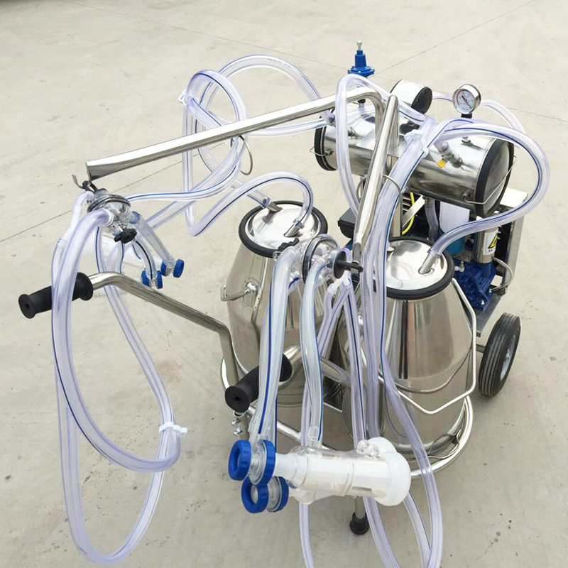 double buckets milking machine