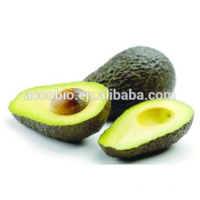 Best seller 100% Natural Avocado extract / Best price Butter fruit extarct powder 10: 1 / Persea americana extract aguacate oils