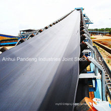 Belt Conveyor/Rubber Conveyor Belt/Nylon Conveyor Belt