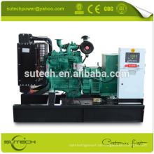Einphasiges elektrisches Dieselaggregat 10Kw, angetrieben durch Motor 403D-15G