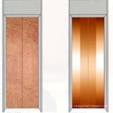 Fjzy-ascenseur (FJ8000-1) ascenseur passager Fjzy-238