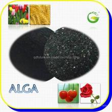 Fertilizante de extracto de algas marinas