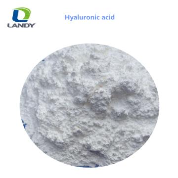 China Zuverlässige Qualität Lebensmittelqualität Hyaluronsäure HA Natrium Hyaluronat