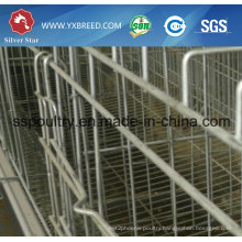15000 Farm Scale Poultry Birds Cage in Zambia Farm and Ghana Farm