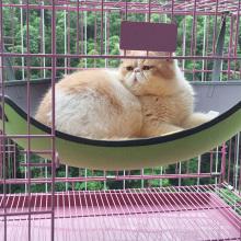 Venda quente Gato / Gatinho Cachorro / Cachorro pet espreguiçadeira Gaiola rede balanço do animal de estimação cama para gato
