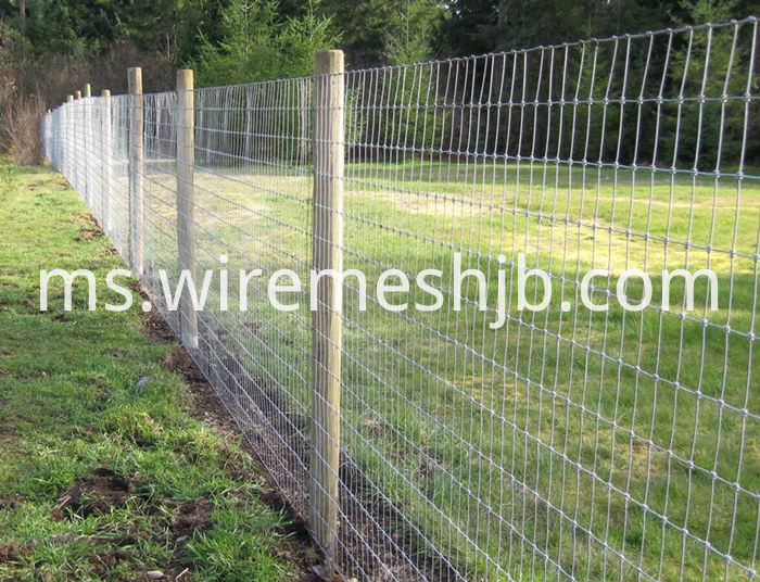 Galvanized Farm Fence