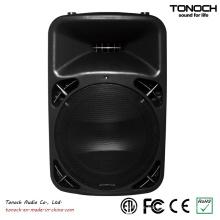 Thb12bu Active Speaker mit 2 Mic Input in it