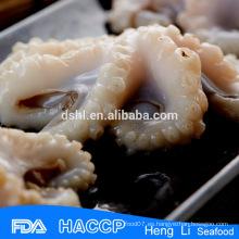 Proveedor de pulpo bebé de china alibaba