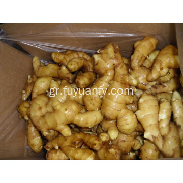Καλή Qulality Fresh Ginger