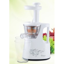 Slow Juicer for Household Use 150W