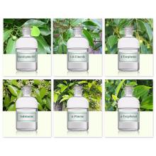 Natural Eucalyptol 99% /1 8 Cineole cas:470-82-6