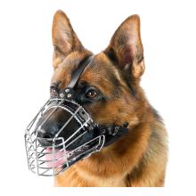 Cage-museau renforcé pour grands chiens
