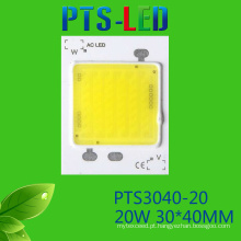 Alta potência 20W 25W/30W/40W/50W AC COB levou alta qualidade 110V 220V Driverless Power LED