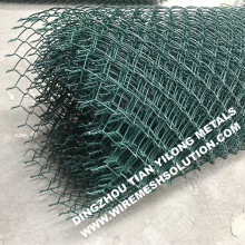RAL6005 PVC Coated Chain Link Fence for Road