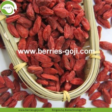 Fuente de la fábrica Fruit Packing Herbal Type Goji Berries
