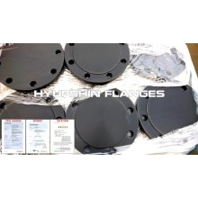 Blind Flange Raised Face EN1092-1 TYPE05 P245GH