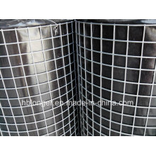 Hot-Dipped Welded Wire Mesh