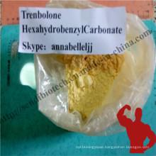 Trenbolon Steroid Powder Trenbolone Hexahydrobenzyl Carbonate CAS 23454-33-3