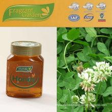 Clover Honey 2012 harvest pure natural raw honey OEM