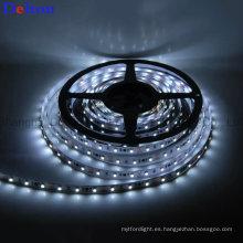 Tira de luz LED flexible aprobada por la CE DC12V / 24V Lámpara de tira LED