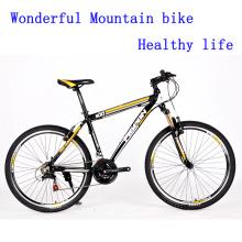 2016 hermosa bicicleta de montaña de freno (FP-MTB-ST048)