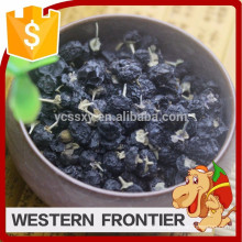 common cultivation type dried style black goji berry