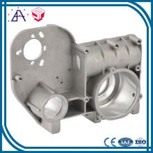 OEM Customized Aluminium Die Casting Part (SY1077)