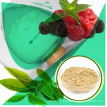 0. Qualifizierte und direkte Versorgung Zitrus Aurantium Pflanzenextrakt