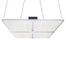 Iluminación profesional Lámparas de cultivo LED de alta eficacia