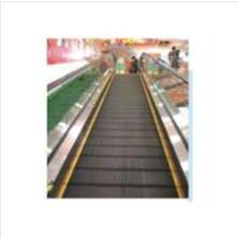 Caminatas interiores con buena calidad Elevador de pasajeros Elevador-ascensor