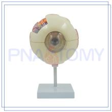 Modèle d'oeil d'inspection de formation de haute qualité de PNT-0660 à vendre