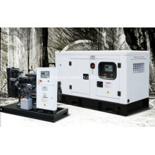 50kVA 40kw AVR Electric Generator for Slaughter House