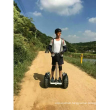 19inch 48V off Road Electric Balance Scooter