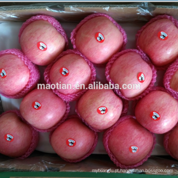 Frutos De Maçã-Stripe