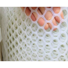 Конкурентоспособная цена и высокое качество Пластиковая сетка