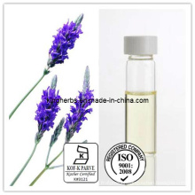 Pure Natural Lavender Oil