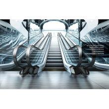 Escalier roulant passager mince VVVF Drive