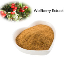 Buy online active ingredients Wolfberry Extract powder