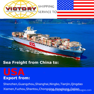 FCL&LCL Shipment/Container Shipping From China to USA-Shipping