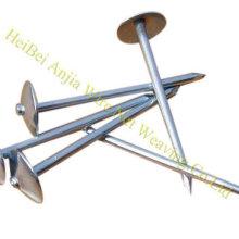 Гладкий корпус Гальванизированный крышка зонтика