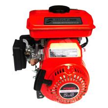 Tragbares Design Hochwertiger 2,5-PS-Benzinmotor zu günstigen Preisen