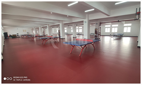 table tennis court