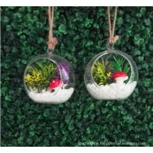 MIni artificial succulent flower plant with glass pot