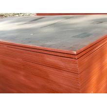Usó láminas de madera contrachapada Núcleo de álamo para usos concretos