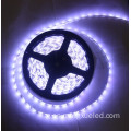 12v 16w 2400k Warm White 3m Tape SMD5630 LED tira de luz