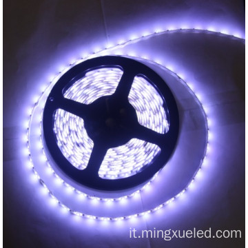 12v 16w 2400k bianco caldo 3m nastro SMD5630 LED Light Strip