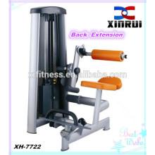 Equipamento traseiro da aptidão da extensão / equipamento interno da ginástica da venda quente / máquina da força