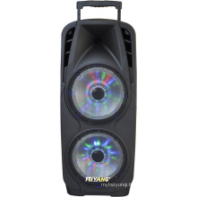 Double 10inch Portable PA System with Rechargeable Battery & Wireless VHF Handheld Microphone F73D