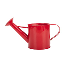 Hanging Plant Flower Pot Watering Can Paradise Bay