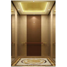 Máquina de ascensor Villa sin habitaciones para la venta caliente